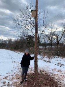 Kestrel box at Cold Brook Farm | NJ
