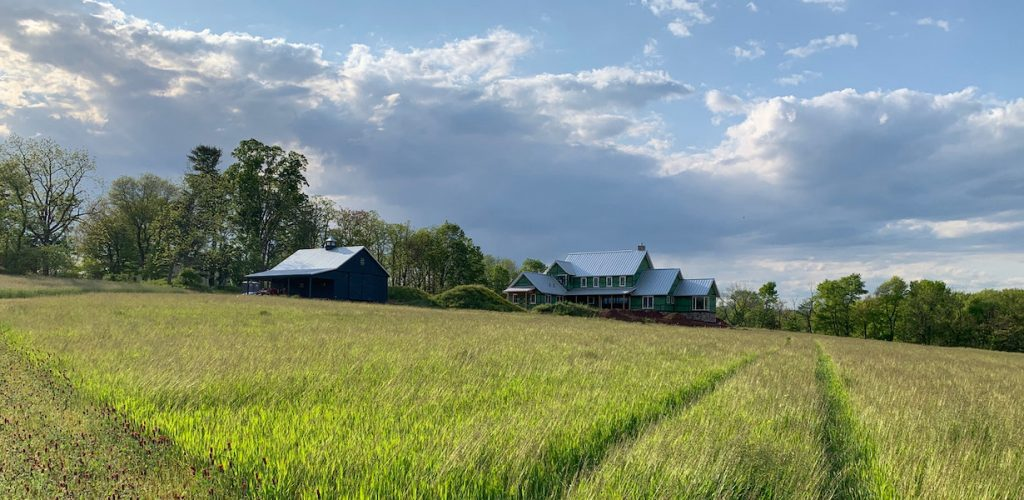 A south-facing view of Cold Brook Farm | WESKetch Architecture + Construction